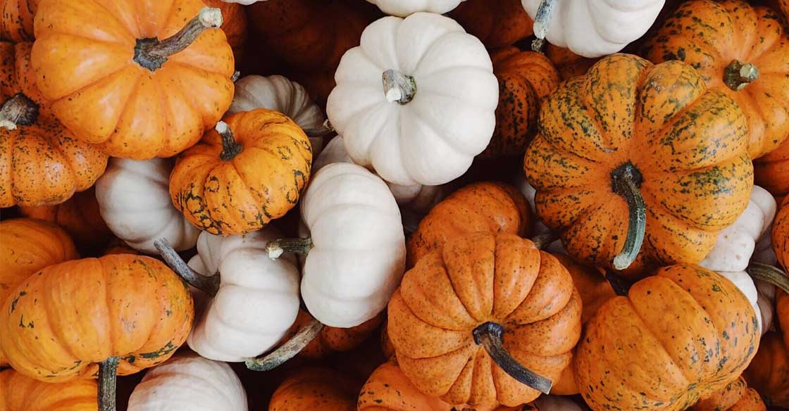 Collection of Small Pumpkins