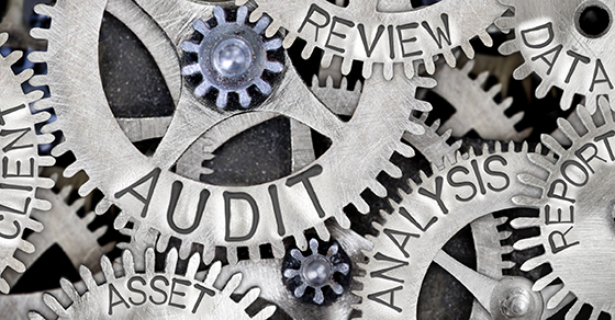 Gears with words Audit