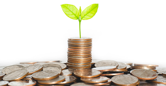 Young Plant Sprouting From Stack of Coins